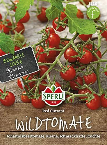 Sperli Wildtomate Red Currant