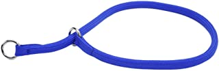 Coastal Pet Products Round Nylon Blue Choke Collar for Dogs, 3/8 By 18-inch