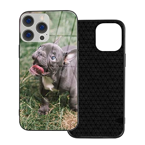 Adorable French Bulldog Puppy. Ip12-6.1 for iPhone 12 Glass Case Shockproof Design,TPU Bumper with Protective Hard Case Cover