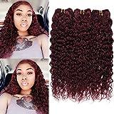 XCCOCO Burgundy Water Wave Weave 3 Bundles 10 10 10inch Colored 99j Wet Wavy Human Hair Weave 9A Brazilian Curly Hair Bundles,100g/Bundles