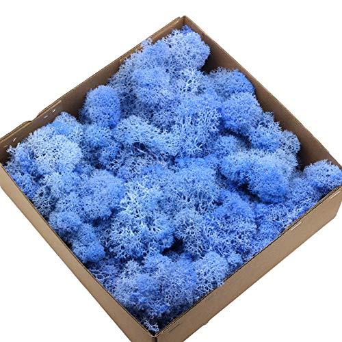 Lsgepavilion 1 caja de musgo seco artificial, decoración de paisajes, bricolaje y manualidades azul claro