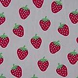SCHÖNER LEBEN. Baumwollstoff Erdbeeren grau rot grün 1,5m