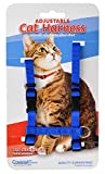 Coastal Pet Adjustable Figure H Cat Harness, Blue | Girth Size: 10' to 18' | One Size Fits Most