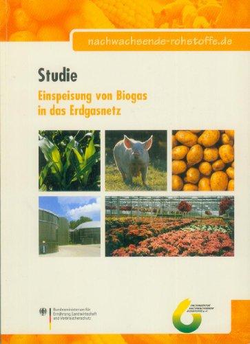 Studie - Einspeisung von Biogas in das Erdgasnetz [3. Auflage 2007]