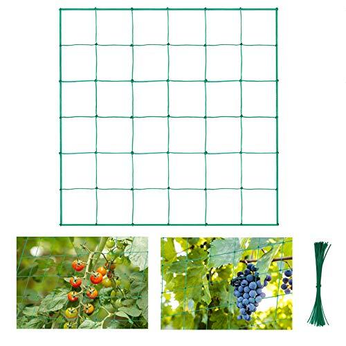 Halcyerdu Filet à Plantes grimpantes, Filet de Treillis, pour récolte de concombres, Légume, Vignes, Plantes Grimpantes, Taille: 1.8m x 1.8m