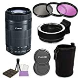 Canon EF-S 55-250mm f/4-5.6 is STM Lens + Auto (EF/EF-S to EF-M) Mount Adapter Bundle for Canon M-Series Cameras (Canon M5, M50, M6, M10, M100)