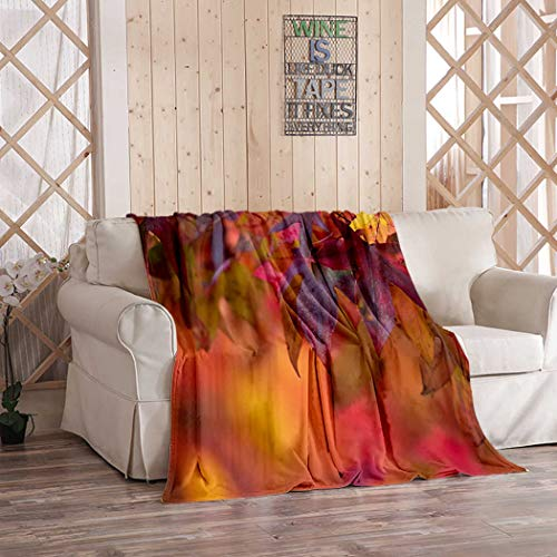 Kuidf Fall Leaf Throw Blanket, Brightly Colored Maple Leaves During Autumn Flannel Bedding Blankets Decorative Cozy Soft Blanket for Bedroom Couch, 50x60 Inches