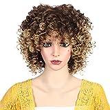 LUCKDE Perücke Afro Afroperücke Lockenkopf Retro 70ies Hair Faschingsperücke Lockig Geföhnt Cosplay Wig Haarteil Echthaar (K)