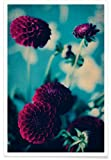 """JUNIQE® Blumen Poster 20x30cm - Design """"Bordeaux"""""""