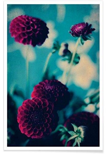 "JUNIQE® Blumen Poster 30x45cm - Design ""Bordeaux"" entworfen von Ingrid Beddoes"