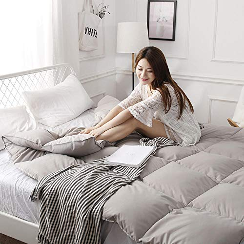 CHOU DAN duvet double, duvet white goose down quilt core spring and autumn is thickened by winter-200X230cm 4000g_gray