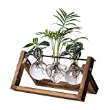 HUABEI Plant Terrarium with Wooden Stand, Air Planter Bulb Glass Vase Metal Swivel Holder Retro Tabletop for Hydroponics Home Garden Office Decoration - 3 Bulb Vase