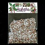 Acalypha NPK Fertilizante - Copperleaf, Mercurio de tres semillas, Chenille enano, Acalypha reptans, Mooreana, wilkesiana, hispida, Hoffmannii - suficiente para 20 litros
