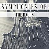 Bach: Violin Concerto in A Minor, BWV 1041: 2. Andante