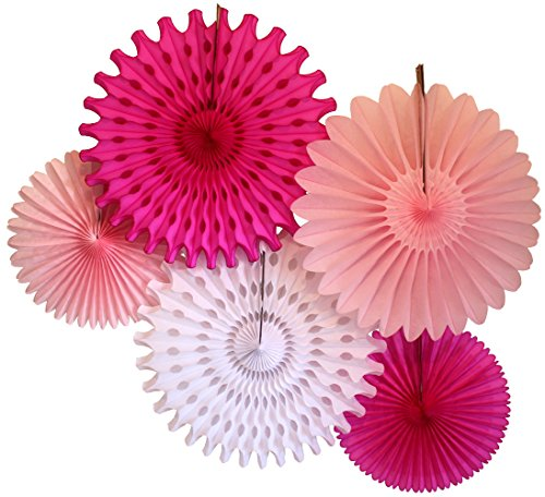 Tissue Paper Fan Collection - 5 Large Assorted Fan, 18 and 13 inches (Pink and White)