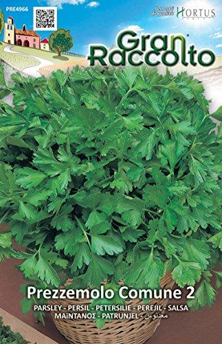 Hortus 43PRE4966 Gran Raccolto Prezzemolo Comune 2, 13x0.4x20 cm