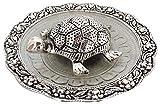 SQUICKLE Silver Plated Fengshui Tortoisemetal Tortoise for vastu,|Lucky for Locker|Vaastu Turtle for Good