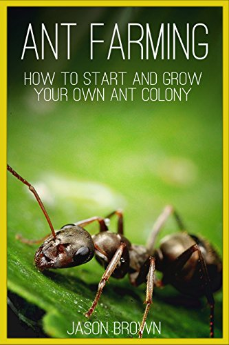 Ant Farming: How to Start and Grow Your Own Ant Colony (English Edition)