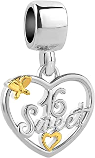 Q&Locket Sweet 16 Charm Heart Love Butterfly Charms Beads for Bracelets