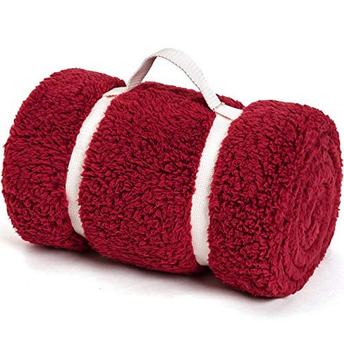 GONAAP Sherpa Throw Blanket Cozy Fluffy Warm Microfiber Fleece Shaggy Lightweight Teddy Plush for Coach Sofa Travel Outdoor Camping Burgendy 5060