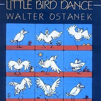 Little Bird Dance
