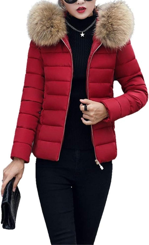 Loozo Winter Women Simple LongSleeved Short Fur Collar Hooded Cotton Coat
