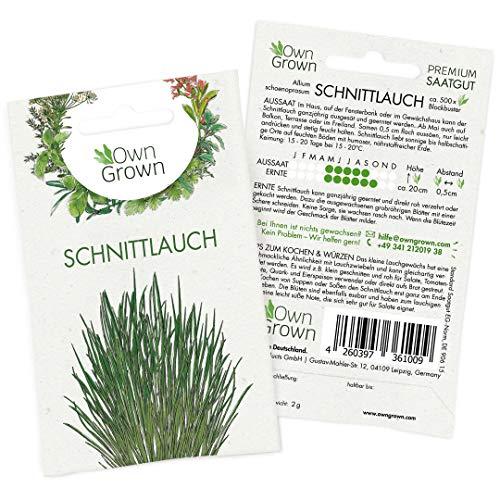 OwnGrown Premium Schnittlauch Samen (Allium schoenoprasum), Schnittlauch Samen mehrjährig, Saatgut für rund 500 Schnittlauch Pflanzen