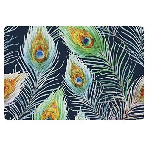Coloranimal Tapis de porte d'entrée de jardin, motif queue de paon, avec dos en caoutchouc antidérapant, pour patio, garage, salon, chambre à coucher, salle de bain