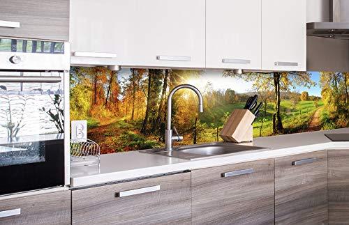 DIMEX LINE Küchenrückwand Folie selbstklebend Wiese | Klebefolie - Dekofolie - Spritzschutz für Küche | Premium QUALITÄT - Made in EU | 260 cm x 60 cm