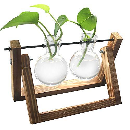 DEDC Desktop helder glas Planter Lamp Vaas met Retro massief houten standaard, Decoratieve Plant Terrarium voor Hydroponics Planten Thuis Tuin Bruiloft Decor 2 Vase Helder