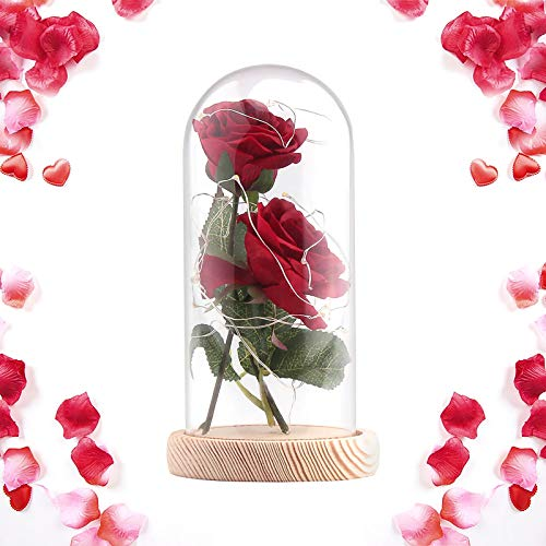Beauty and The Beast Rose,2 pcs Enchanted Red Rose in Glass Dome with LED Light,Best Present for Her/Mom Holiday Birthday Party Wedding Anniversary Valentine Home Decor (Red)