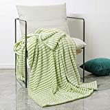 Simple&Opulence Dot Velvet Throw Blanket, Lightweight Striped Blanket for Sofa/Bed/Couch, Ultra Soft, Plush, Cozy and Warm, Green and White, 50''x60''