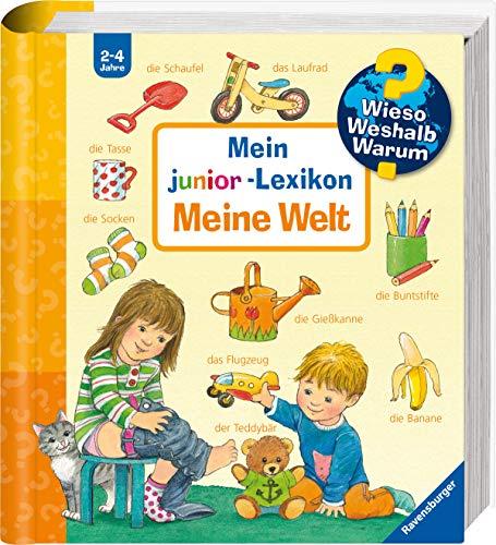 Mein junior-Lexikon: Meine Welt (Wieso? Weshalb? Warum? Sonderband)
