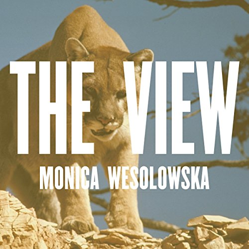 The View audiobook cover art