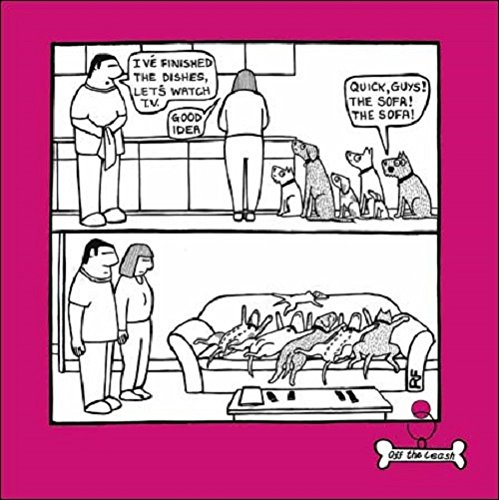Quick, Guys The Sofa Cartoon Dog Humour Greeting Card Off The Leash Cards