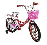 Zerimar Infantiles para niñas ruedines y Cesta | Bici niña 14,16,18 Pulgadas | Bicicletas 3-7 años