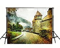 城の写真の背景灰色の写真の背景FT0409の横にある7x5ftの落葉性道路
