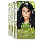 Naturtint Coloración 2.1 Negro Azulado, 100% Cobertura de canas y Hidratación, Ingredientes Vegetales y Aceites 100% Biobotánicos, Color Natural y Duradero, Sin Amoniaco, Pack de 3.