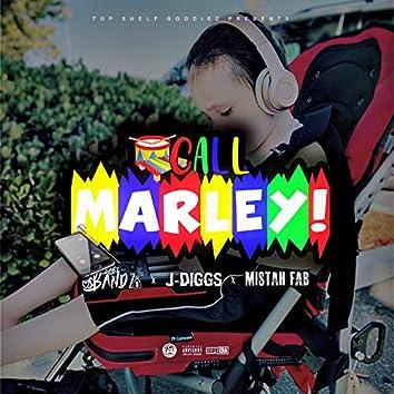 Call Marley