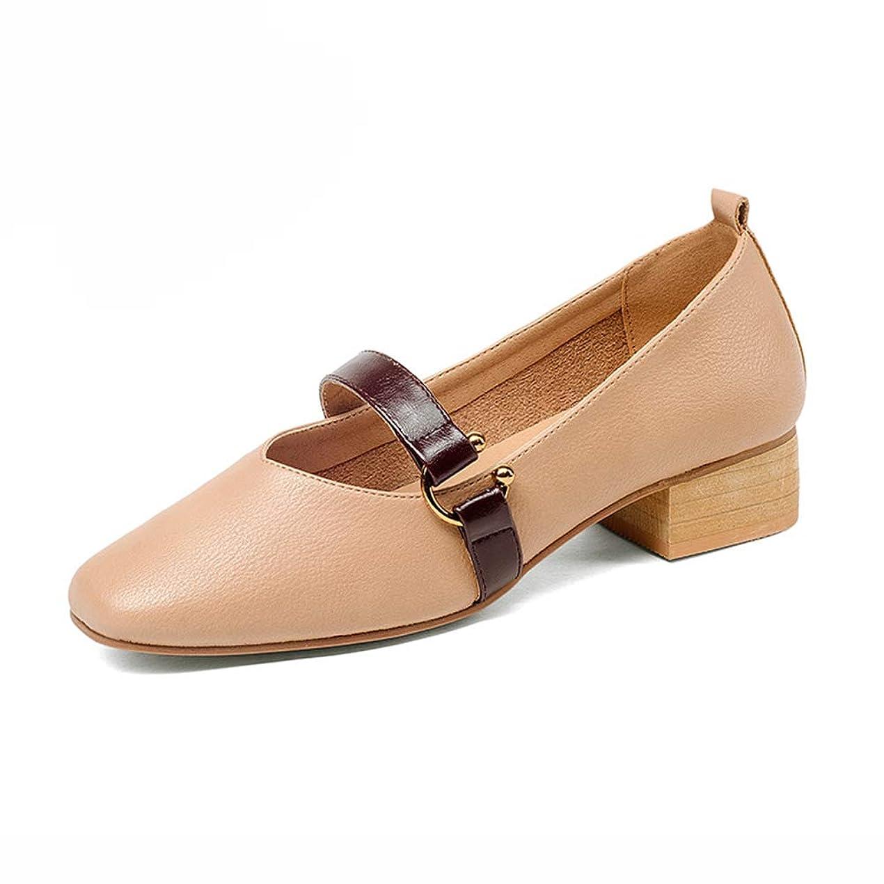 盆妖精調停するHWF レディースシューズ 女性の浅い口PUレザーカジュアルシューズレザー快適なファッション運転靴 (色 : ライトタン, サイズ さいず : 35)