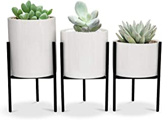 SQOWL 3 Piece White Ceramic Succulent Planters Modern Indoor Flower Planter Pot with Iron Stand