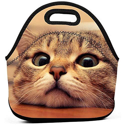Lunch Box Nette Katze Auf Dem Schreibtisch Tragbare Wiederverwendbare Lunch-Tasche Wasserdichte Picknick-Tasche Isolierte Kühler-Reißverschlussbox