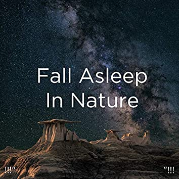 "!!!""  Fall Asleep In Nature ""!!!"