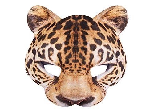 gepard gesicht