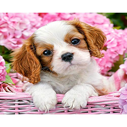 Cross Stitch Embroidery Beginners Stamped-Little Flower Dog-DIY Cross Stitching Supplies Needlework- Holiday Gift Crafts-for Home Decor 16x20 inch (11CT Pre Printed Canvas)