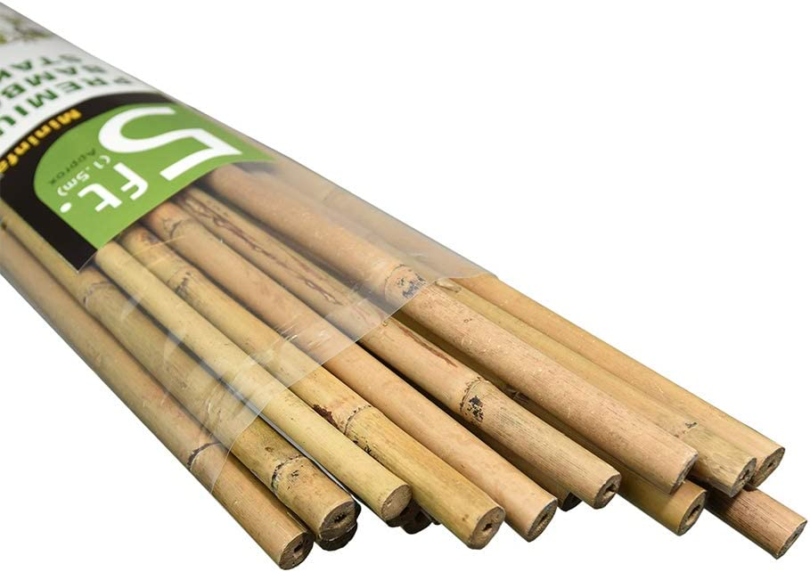 Mininfa Natural Sales for sale Bamboo Stakes Outlet ☆ Free Shipping Eco-Friendly Feet 5 Garden