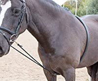The soft lunge aid works on the bars and corners of the mouth When the horse raises its head, pressure is applied to its mouth and bars encouraging the head to lower Encourages a longer, lower outline and allows the horse to stretch though his back w...