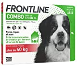 Frontline Chiens