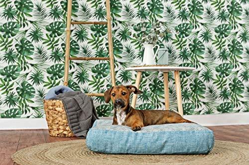 Eco Friendly Cama para perro 100% algodón orgánico: Amazon.es ...