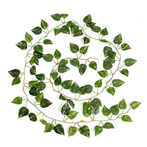 Kicode Evergreen vigne Plantes Feuilles Guirlande Hanging faux Décoration intérieure pour extérieur intérieur 79